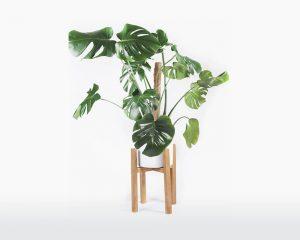 Plantenstandaard eikenhout handgemaakt